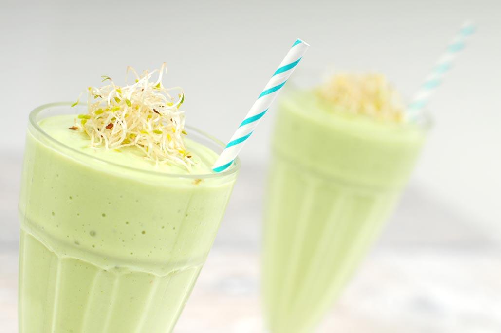 dieet shakes zelf maken